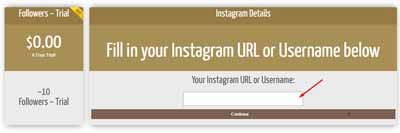 cara auto followers instagram tanpa password dan login