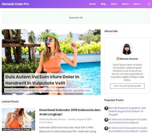 demo template blogger genesis color pro